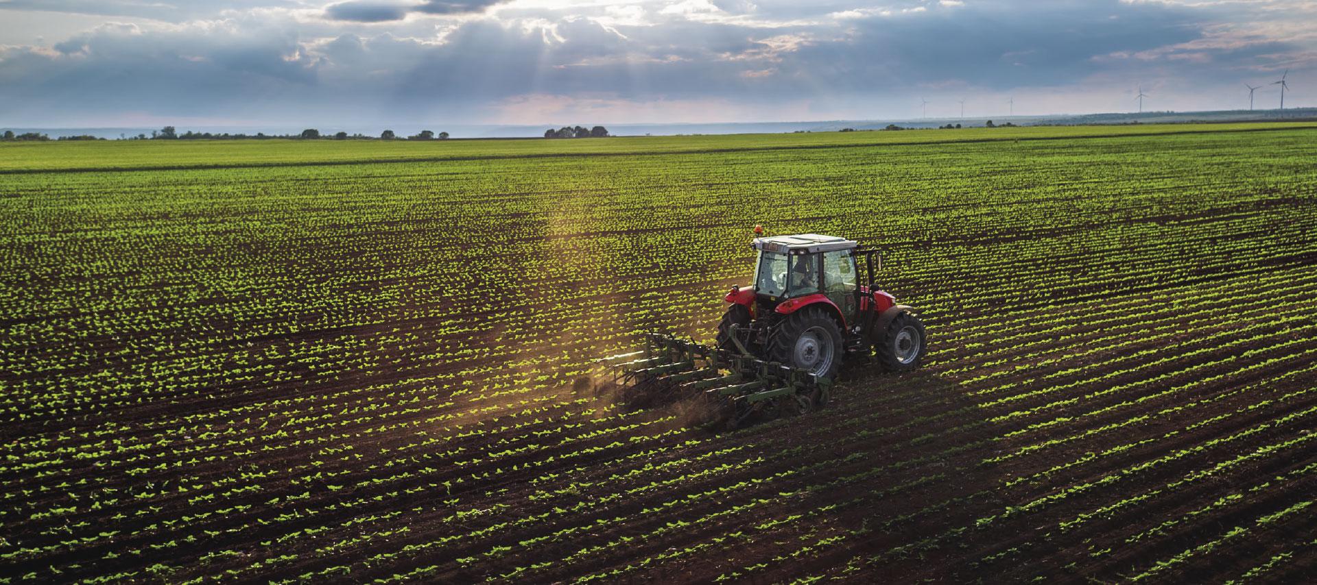 https://www.lacesenate.it/wp-content/uploads/2020/11/agricoltura.jpg